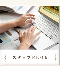 スタッフblog